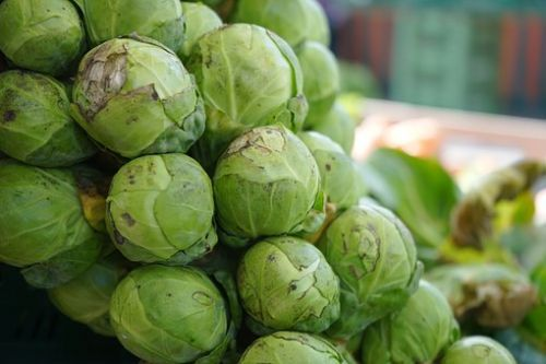 brussels-sprouts-318200__340