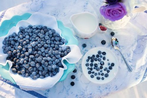 blueberries-1576409__340